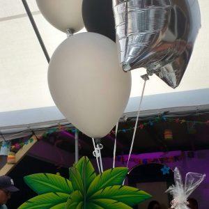 tros gemengde ballonnen esn verhuur